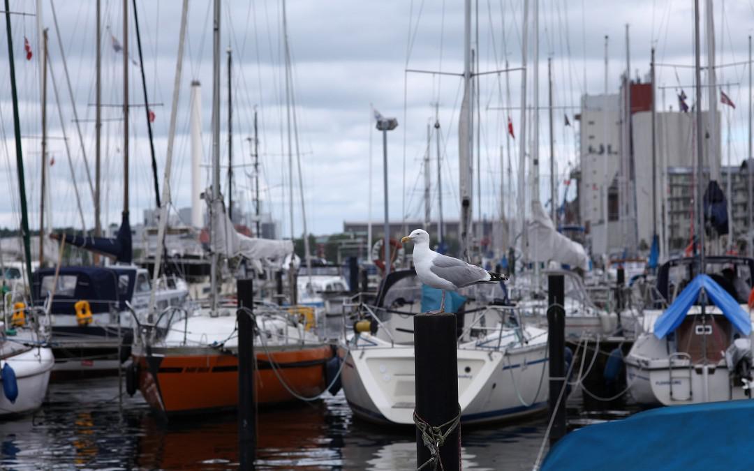 Instalaciones de MT/BT para Puertos Deportivos