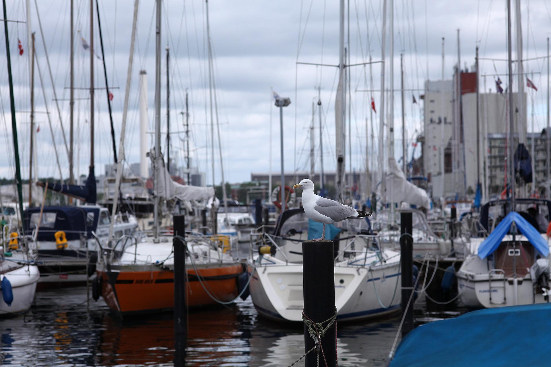 facilities-at-marinas