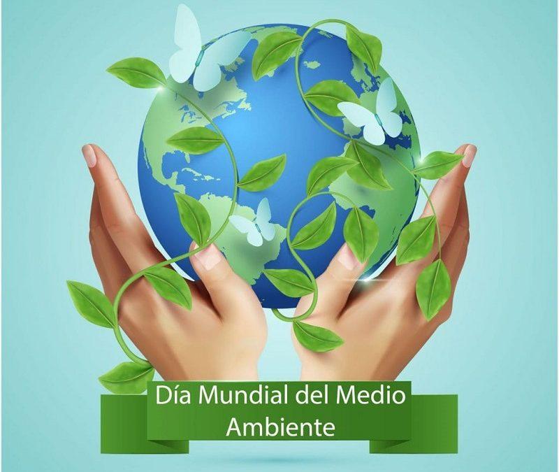 dia_mundial_medio_ambiente